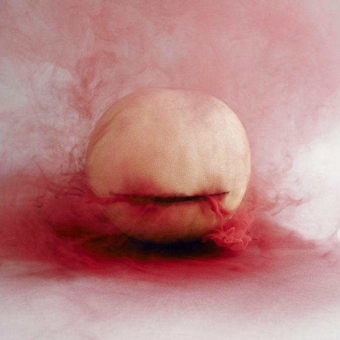 maciek-jasik-secret-lives-of-fruits-vegetables-designboom-11